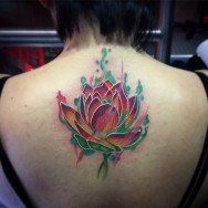 lotus_collab_jared_svetlyo